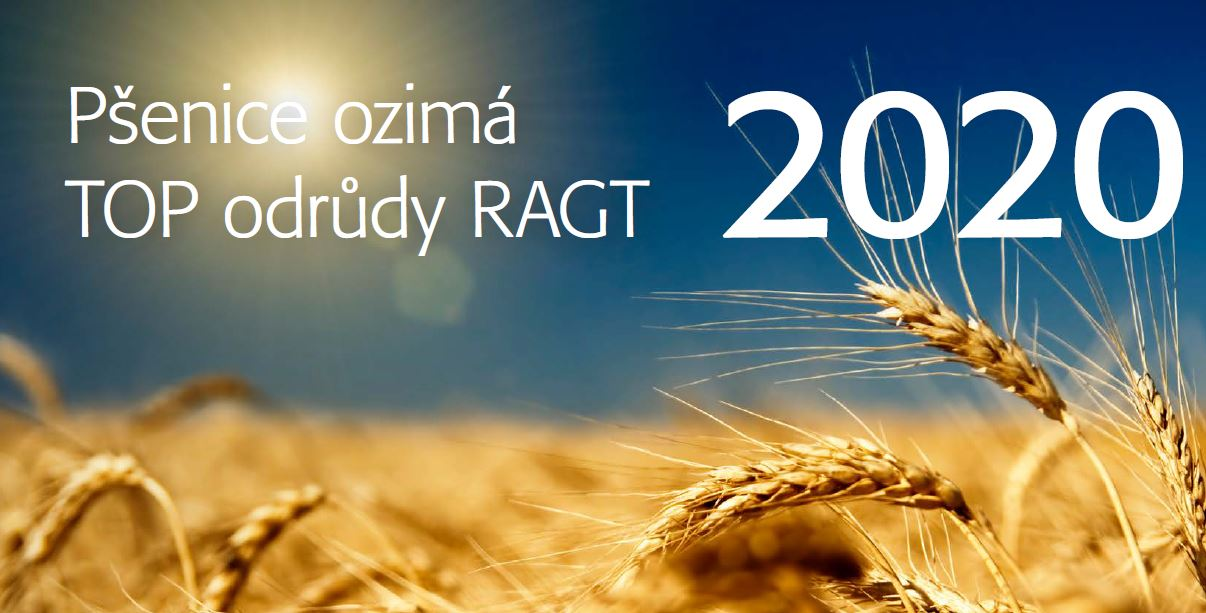 Katalog TOP pšenic 2020